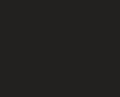 De Vos Consultancy Logo footer